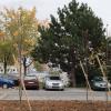 Na Zombovej ulici pribudlo parkovisko, zeleň aj bezbariérovosť
